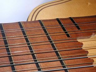 bandora fingerboard with slight scallops between metal frets