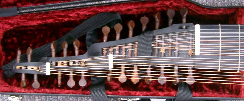 staggered pegboxes of a baroque swan neck lute